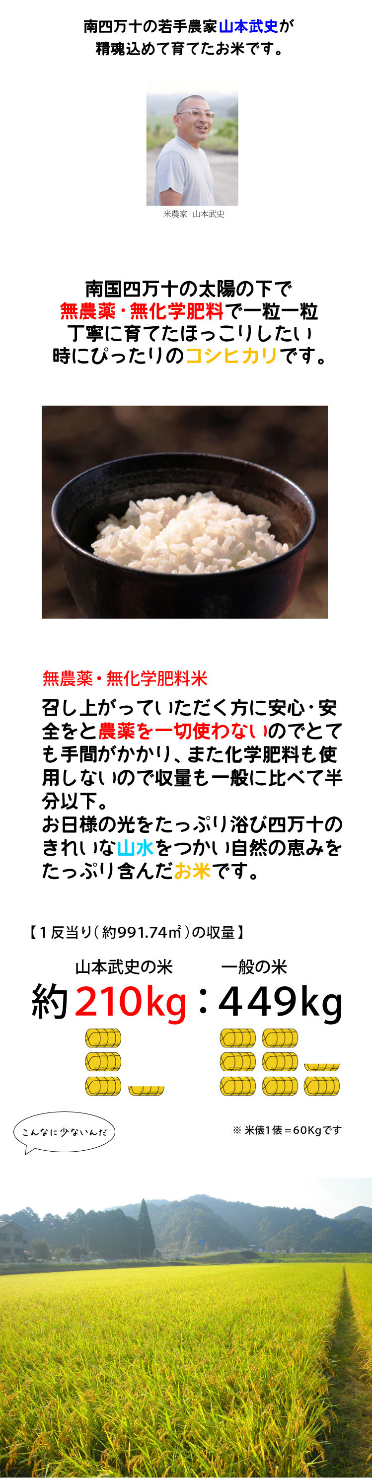 タケちゃん米説明文